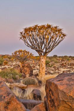20160627-Namibia-1015.jpg