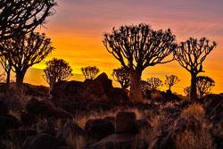 20160627-Namibia-1040.jpg