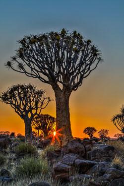 20170628-Namibia-107A.jpg