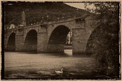 20180817-Heidelberg-955-B.jpg