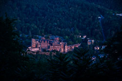 20180818-Heidelberg-279-279.jpg
