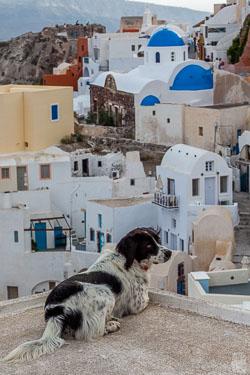 Greece-0509-1476.jpg
