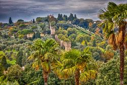 20161023-Tuscany-493A.jpg