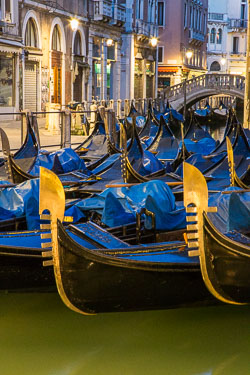 20120223-Venice-23.jpg