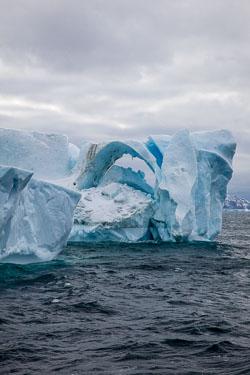 120510-Antarctic-Sound---Weddell-Sea-106.jpg