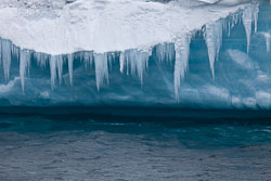 120510-Antarctic-Sound---Weddell-Sea-314.jpg