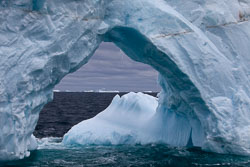 120510-Antarctic-Sound---Weddell-Sea-56.jpg