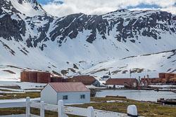 Grytviken-274.jpg