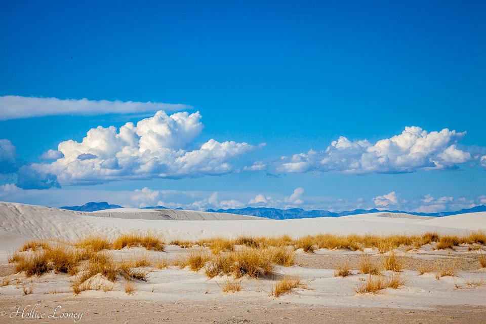 White-Sands-011410-8.jpg