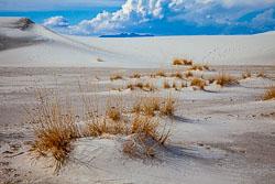 White-Sands-011410-19.jpg