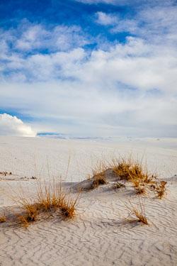 White-Sands-011410-5.jpg