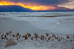 White-Sands-011410-68.jpg