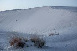 White-Sands-011510-11.jpg