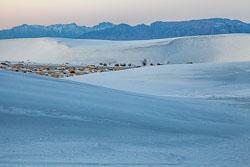 White-Sands-011510-30.jpg