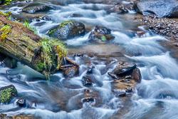 20120417-Columbia-River-194.jpg